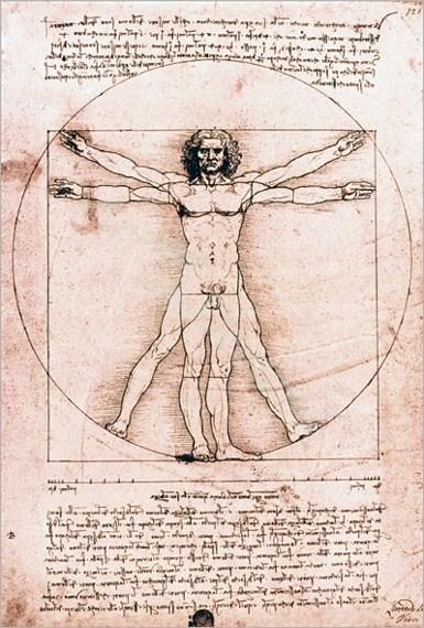 El hombre de Vitrubio - Desnudos