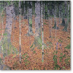 The Birch Wood, 1903 (oil on canvas) - KLIMT, Gustav