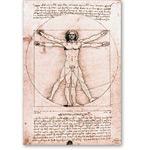 El hombre de Vitrubio - VINCI, Leonardo da