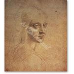 Estudio de una cabeza - VINCI, Leonardo da