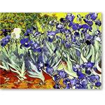 Digital Effect -Irises (Van Gogh)- CM7085 - Desnudos